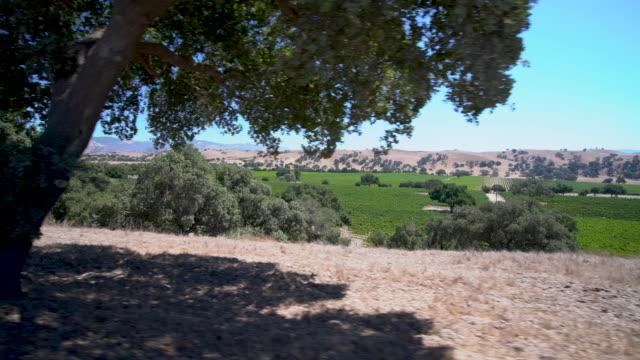 santa ynez valley - サンタイネス点の映像素材/bロール