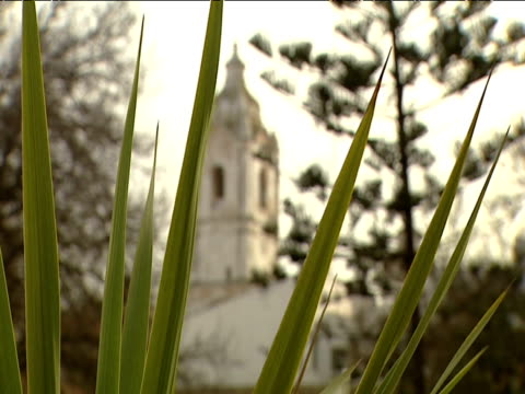 stockvideo's en b-roll-footage met santo antonio church with long grass in foreground pull focus to church - kerktoren