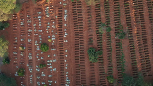 sao paulo cemetery aerial view during covid-19 crisis - dead stock videos & royalty-free footage