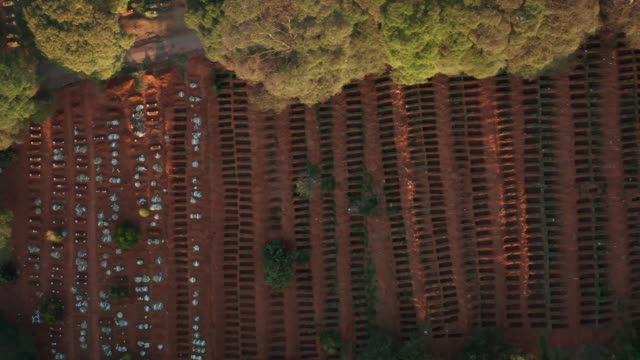 vidéos et rushes de vue aérienne du cimetière de sao paulo pendant la crise de covide-19 - cimetière