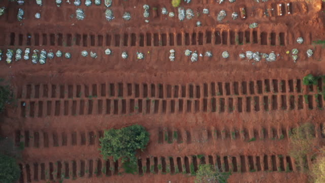 sao paulo cemetery aerial view during covid-19 crisis - death stock videos & royalty-free footage