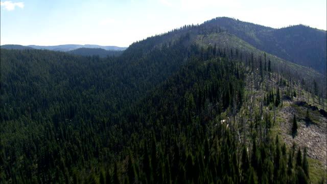 vídeos de stock, filmes e b-roll de montanhas de safira - vista aérea - montana, no condado de ravalli, helicóptero vídeo filmagem, aéreo, cineflex, estabelecendo o tiro, estados unidos - baixo posição
