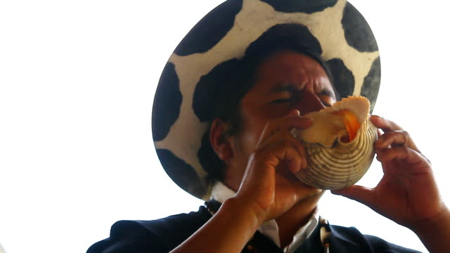 saraguro man blowing a horn made with seashell. - seashell stock videos & royalty-free footage