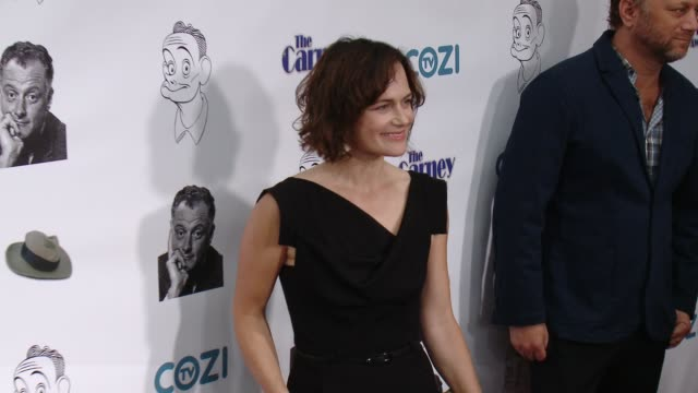sarah clarke at the 3rd annual carney awards at the broad stage on october 29, 2017 in santa monica, california. - 女優 サラ クラーク点の映像素材/bロール