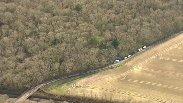 provisional trial date set for october; england: kent: ashford: ext air views search site seen through trees in woodland - crime and murder stock-videos und b-roll-filmmaterial
