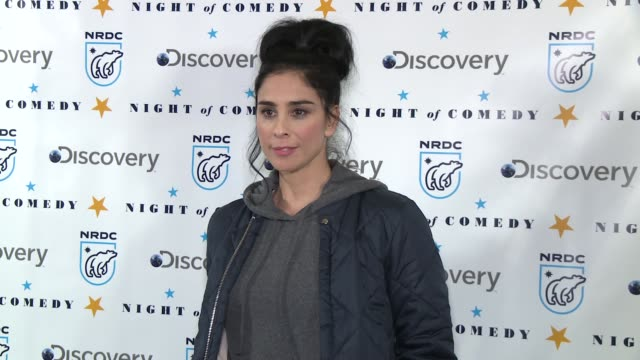 sarah silverman at the natural resources defense council presents night of comedy benefit hosted by seth meyers at new york historical society on... - seth meyers stock videos and b-roll footage