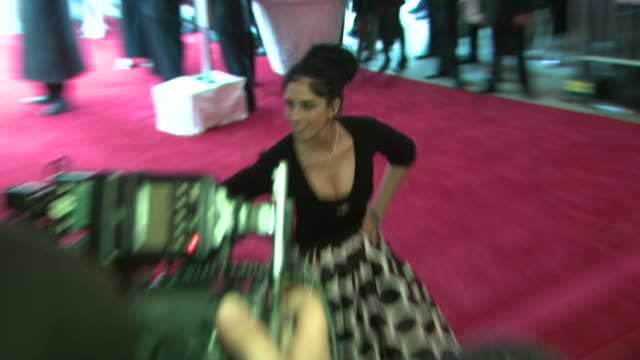 """stockvideo's en b-roll-footage met sarah silverman at the """"superheroes: fashion and fantasy"""" costume institute gala at the metropolitan museum of art at the metropolitan museum of art... - sarah silverman"""