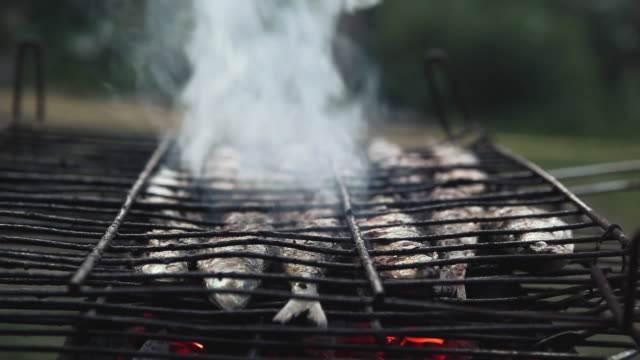 CU Sardines on barbeque grill / Corsept, Loire-Atlantique, France