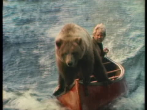 sasha the bear goes on a boat ride with her trainer. - stunt stock videos & royalty-free footage