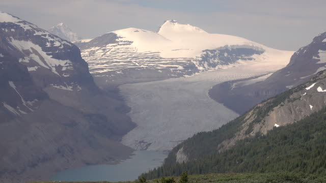 saskatchewan glacier castleguard mountain parker ridge trail banff national park alberta canada - saskatchewan stock videos and b-roll footage