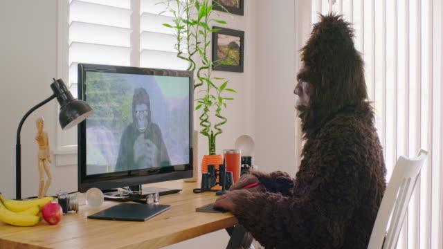 videoconferenza online sasquatch e gorilla - bigfoot video stock e b–roll
