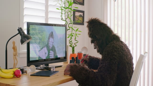 sasquatch bigfoot online videoconference - bigfoot video stock e b–roll