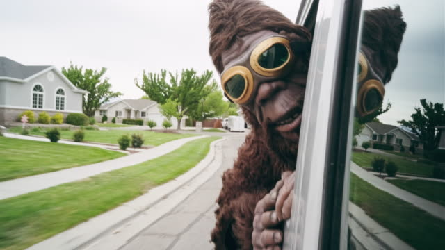 sasquatch riding in a car - characters stock videos & royalty-free footage