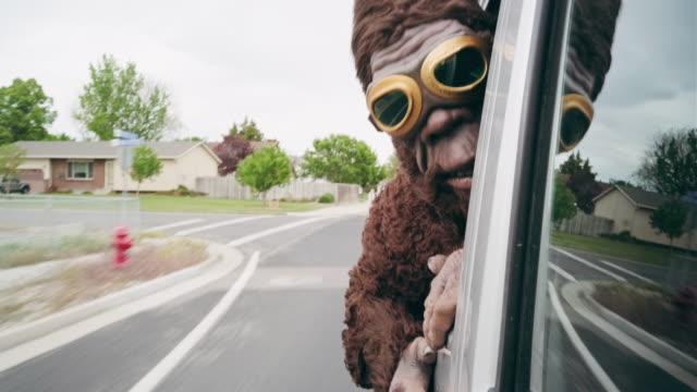 sasquatch in sella a un'auto - bigfoot video stock e b–roll