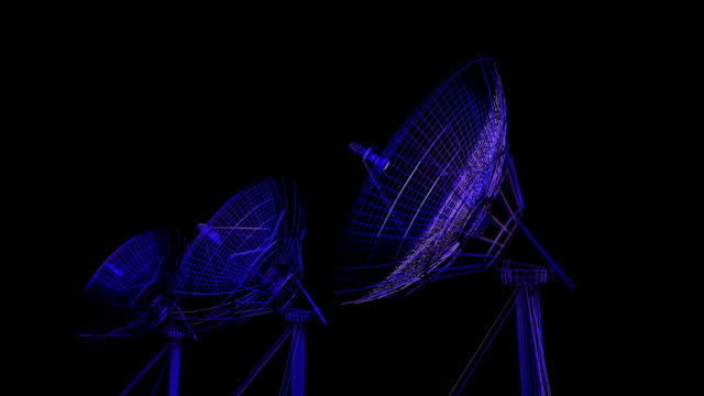 antenna satellitare - antenna parte del corpo animale video stock e b–roll