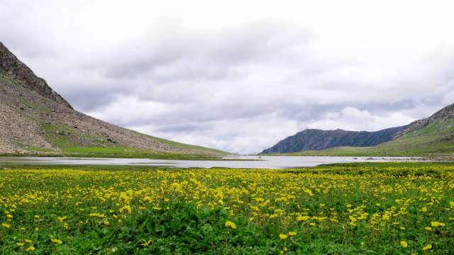 satsar lake in kashmir himalayas - valley stock videos & royalty-free footage