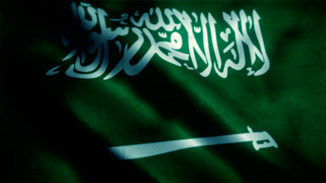 saudi arabian flag - day stock videos & royalty-free footage