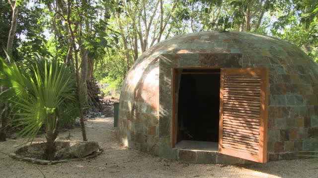 ms, pan, sauna in jungle, playa del carmen, quintanaroo, mexico - palma nana video stock e b–roll