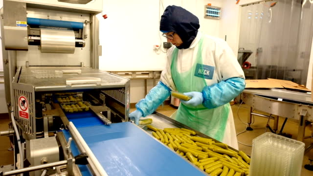 sausage production takes place at the heck sausage factory on february 18 2019 in northallerton england the north yorkshire based company was... - vegetarian food stock videos & royalty-free footage