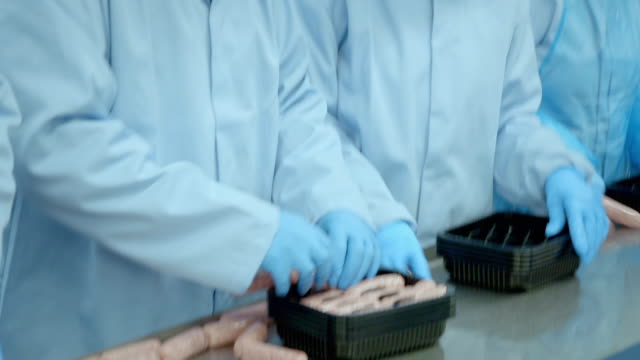 sausages being hand packed on production line - tray stock videos & royalty-free footage