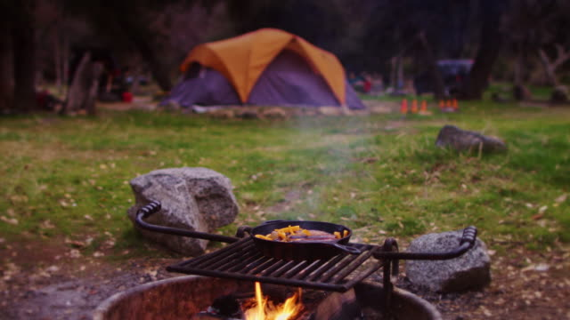 sausages cooking on campfire in forest campground - cast iron stock videos and b-roll footage
