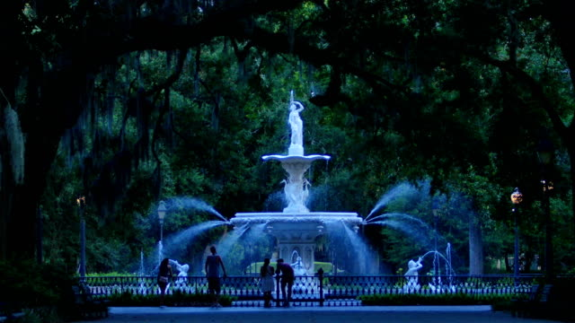 savannah, ga - georgia stati uniti meridionali video stock e b–roll