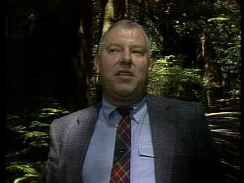 save the redwoods league spokesperson john dewitt states that redwood trees are irreplaceable and should be considered a national treasure - 木を抱く点の映像素材/bロール