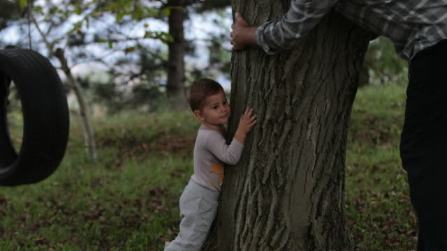 save the trees - tree hugging stock videos & royalty-free footage