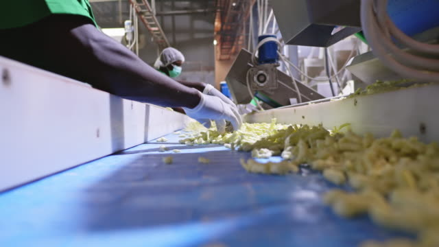 savory crisps going through the quality inspection stage - hygiene stock videos & royalty-free footage