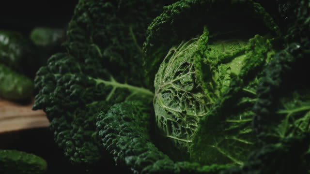 savoy beet and pickles - savoy cabbage stock videos & royalty-free footage