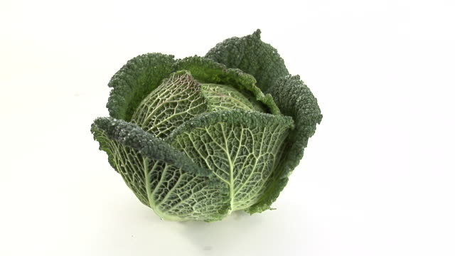 cu, savoy cabbage spinning on white background - white background stock videos & royalty-free footage