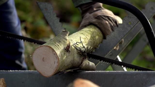 zeitlupe: saw - baumstumpf stock-videos und b-roll-filmmaterial