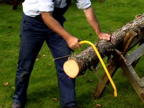 Sawing fire wood PAL