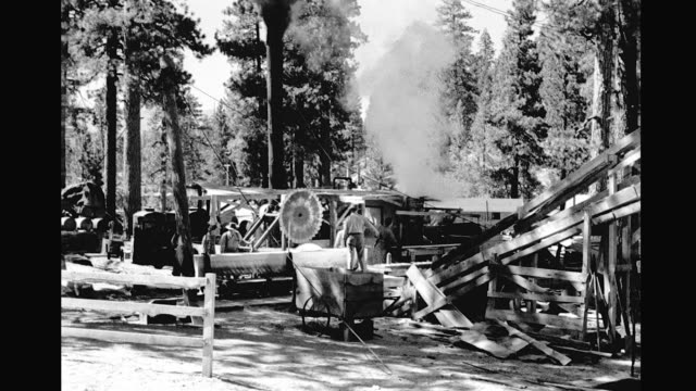 vídeos de stock e filmes b-roll de sawmill operating men sawing large log into planks surrounded by forest sawmill in forest on january 01 1940 - rodear