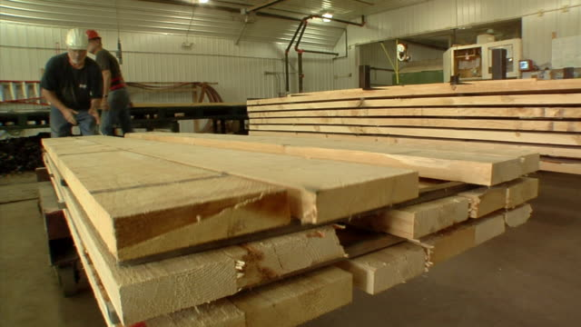 ms, sawmill workers stacking timber, manistique, michigan, usa - timber stock videos and b-roll footage