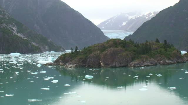 sawyer glacier - alaska - spruce stock videos & royalty-free footage