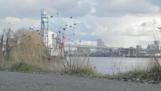 vídeos de stock e filmes b-roll de scaling environmental view of downtown - rio willamete