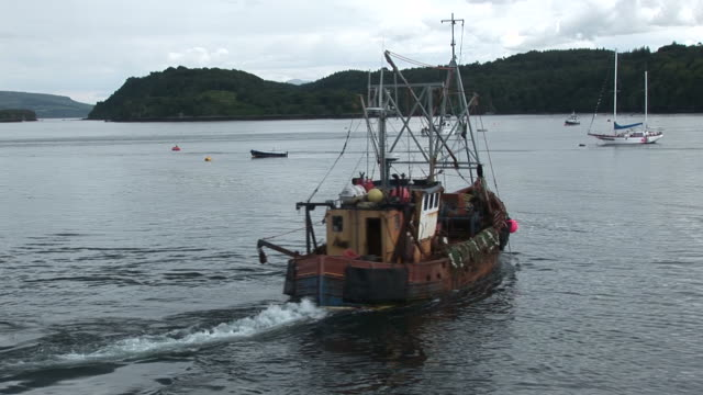 scallop trawler moving off. tobermory. mull. scotland - fishing industry stock videos & royalty-free footage
