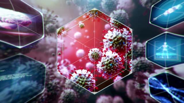 scanning coronavirus - herpes video stock e b–roll