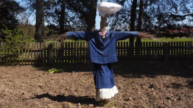 scarecrow - agricultural equipment - mannequin stock videos & royalty-free footage