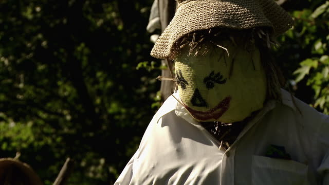 scarecrow in a yard - male likeness stock videos & royalty-free footage
