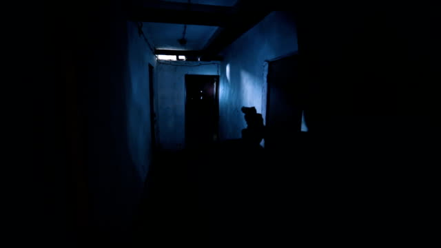 scary ghost in basement - arrest stock videos & royalty-free footage