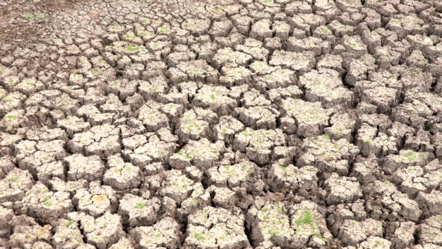 scene dolly shot of dry cracked earth during climate change drought disaster, global warming - climate stock videos & royalty-free footage