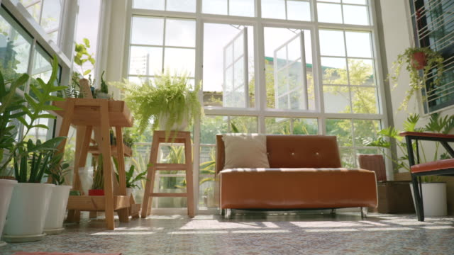 scene dolly shot of interior modern home with the small garden, relaxation in small garden at greenhouse - living room stock videos & royalty-free footage