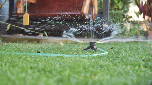 scene dolly shot of sprinkler on the grass at home, concept of day in the life objects - prato rasato video stock e b–roll