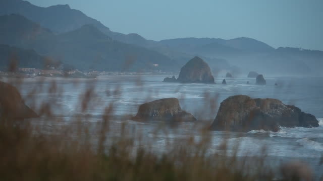 a scene from ecola state park in cannon beach oregon. - cannon beach stock videos & royalty-free footage