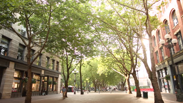 a scene from pioneer square in seattle on a sunny day. - courtyard stock videos & royalty-free footage