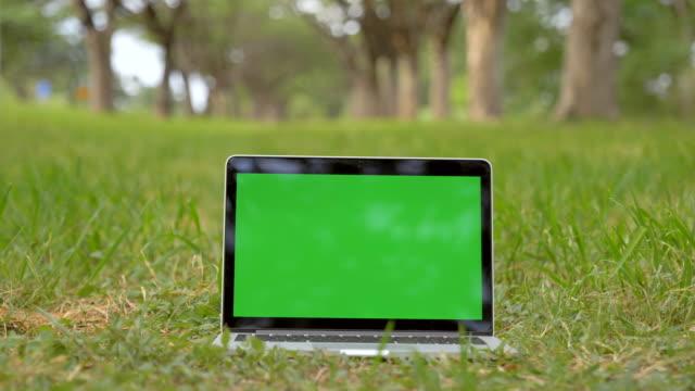 vídeos y material grabado en eventos de stock de escena de computadora portátil que muestra la pantalla de croma verde se encuentra en el parque. tecnología en segundo plano, concepto de experiencia tecnológica - hierba familia de la hierba