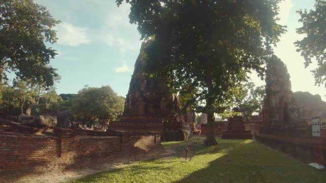 scene of temple in ayutthaya historical park in the midst of nature, tree. wat phra mahathat, ayutthaya province, thailand - history stock videos & royalty-free footage