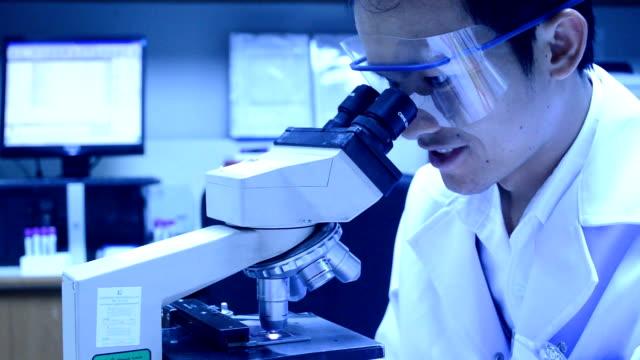 vídeos de stock, filmes e b-roll de cena de testes de laboratório - artéria humana